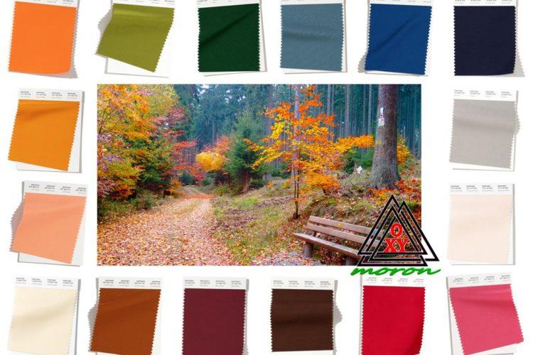 Модные цвета осень 2019-зима 2020